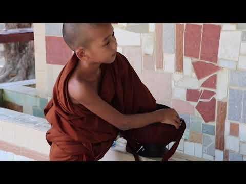 Panditarama forest meditation