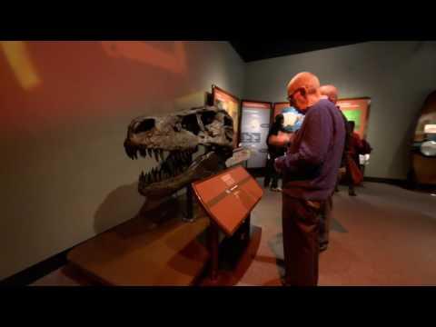 Biomechanics exhibition - Coming To Bishop Museum