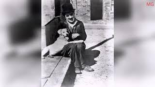 Кинокул: фильм собачья жизнь(1918).