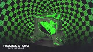 Regele Mic - Banii In Rucsac (Original Radio Edit)