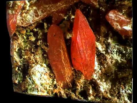 CROCOITE 3D  KOSMINSKY MINE   DUNDAS   ZEEHAN District   TASMANIA   AUSTRALIA   Campo 4 Mm  Enhanced
