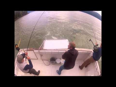 King salmon fishing wrangell alaska