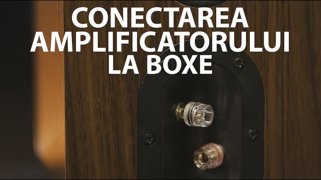 Tutorial: cum conectezi amplificatorul la boxe