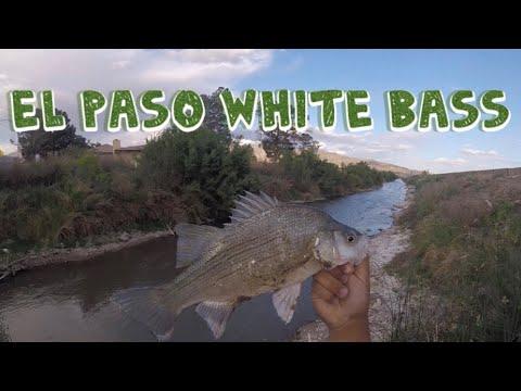 Fishing El Paso And Crossing The Rio Grande River