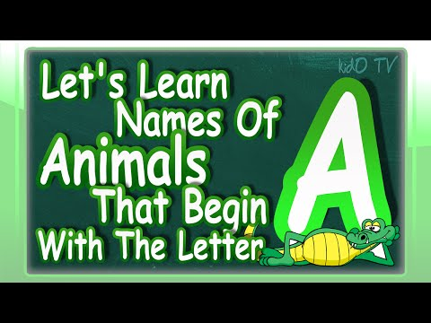 Animals Names In English That Begin With The Letter A | Learn Animals Names With Pictures | kidO TV
