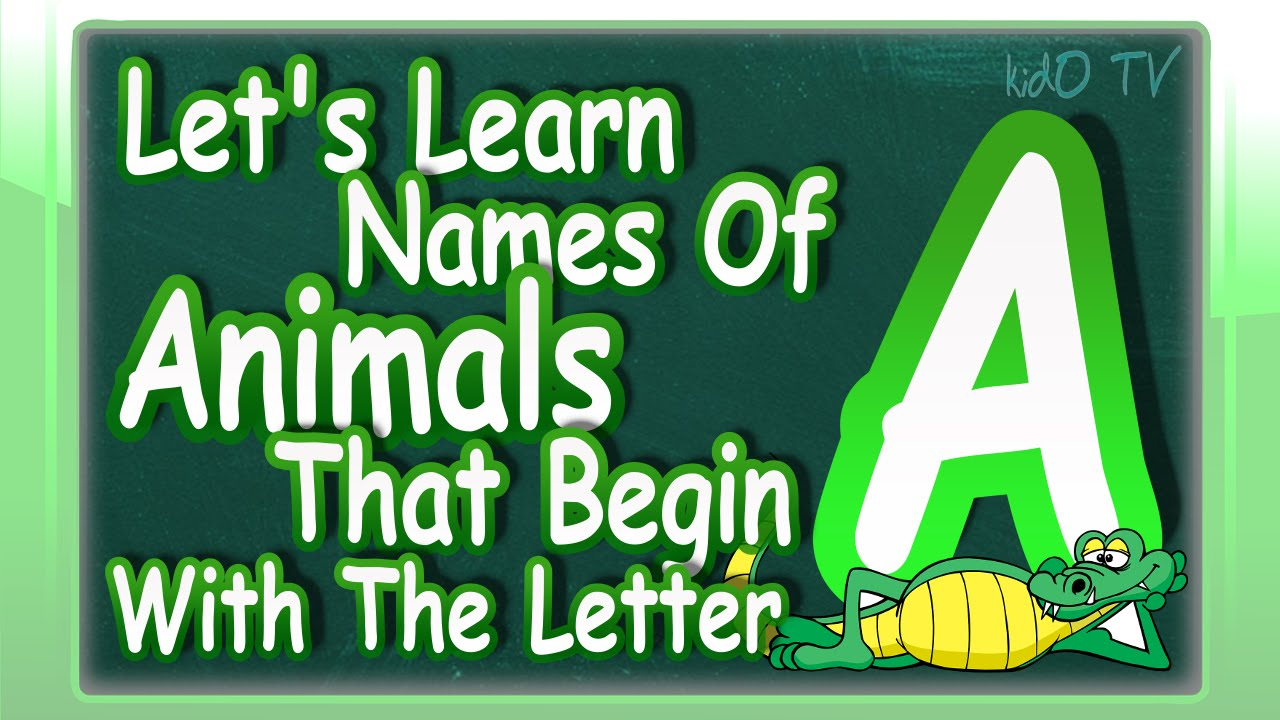 name an animal that starts with the letter n animals names in that begin with the letter a 23738 | maxresdefault