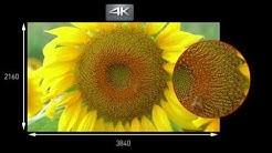 Panasonic 4K Ultra HD Camcorder HC-X1000 - Produktvorstellung