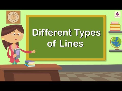 Different Types Of Lines | Grade 1 | Maths For Kids | Periwinkle