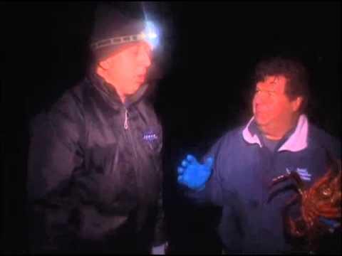 Sport Fishing With Dan Hernandez Santa Monica Bay