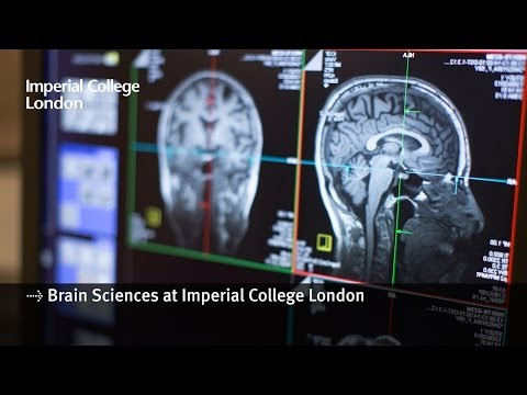 Brain Sciences research at Imperial College London