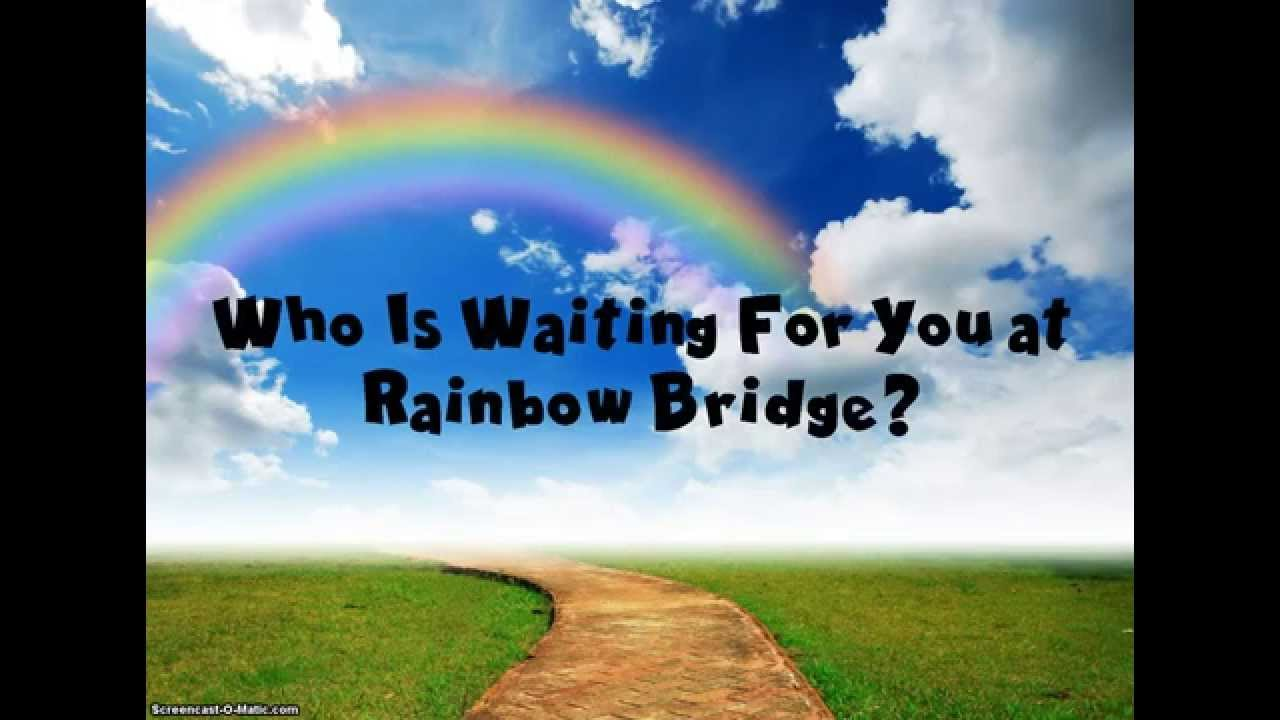 Rainbow Bridge Poem Youtube