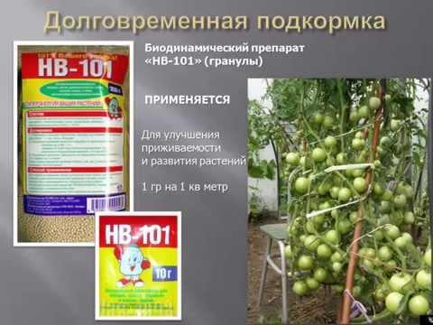 Биопрепараты на садовом участке