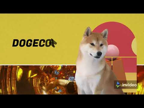 Bitcoin   Doge   Crypto ma log kyn pagal hain   Crypto Currency is future But why?