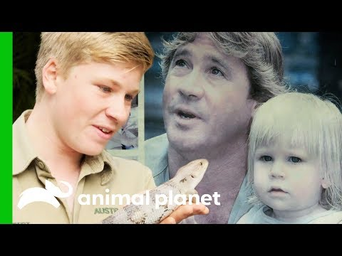 Robert Irwin is Following in Steve Irwin's Footsteps