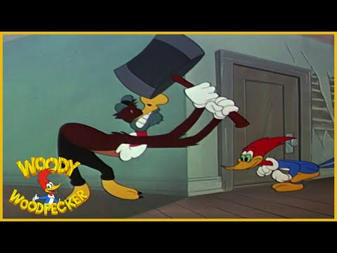 Woody Woodpecker Classic | Slingshot 6 7/8 | Full Episodes