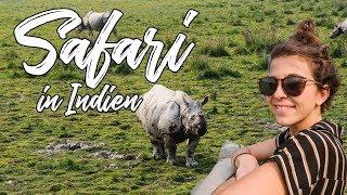 Viel GÜNSTIGER als gedacht - SAFARI im KAZIRANGA NATIONALPARK in Assam l Nord Ost Indien