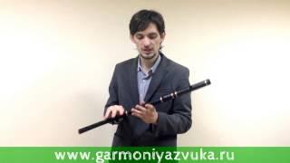 Первый ВИДЕО УРОК по игре на Ирландской поперечной флейте в Ре