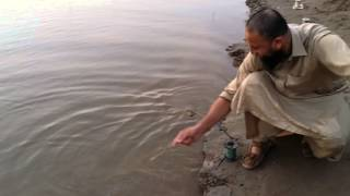Fishing in pakistan by aqibkhan kashif