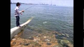 Fishing in Singapore - 钓鱼10