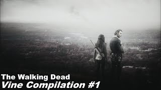 TWD Vine Edit Compilation #1
