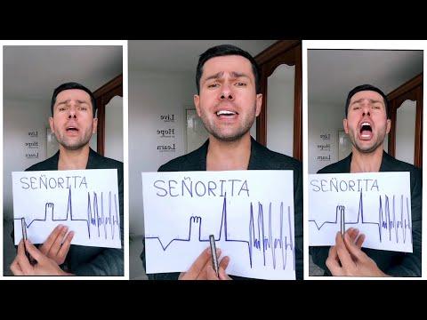 Senorita Cover Song (Harel Asaf) - #cover #song #thebest #short #funny #music