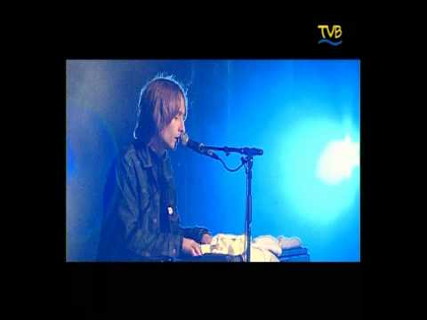 The Divine Comedy - 08 The Dogs and the Horses (La Route Du Rock 2002)