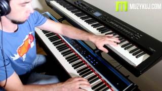 compare physis piano h1 vs roland rd 800