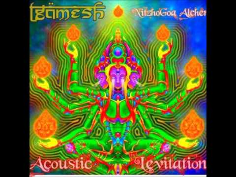 Giilgamesh - Acoustic Levitation (Goa Trance Set)