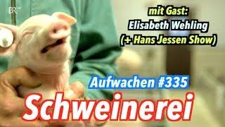 Aufwachen #335: Ferkelkastration, Friedrich Merz, der Wolf + Elisabeth Wehling über Framing