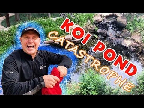 KOI POND CATASTROPHE: GREG FALLS IN!!