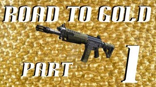 Road to Gold SWAT-556 (Black Ops 2) - Part 1