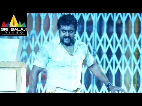 Singam (Yamudu 2) Telugu Movie Part 12/14 | Suriya, Hansika, Anushka | Sri Balaji Video