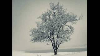 Der Lindenbaum aus Schuberts Winterreise