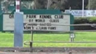 Orange Park Kennel Club