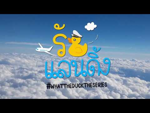 Ost What The Duck The Series (Opening) Lirik + Bahasa