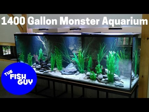 Filtration Upgrade on a Monster 1400 gallon Aquarium!