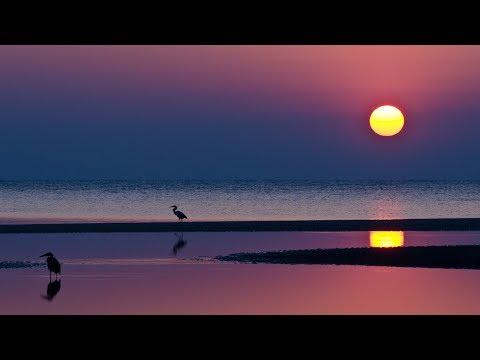 *Sunset Dreams*  ...  (music Sweet People)