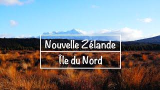 Zélande sites de rencontre
