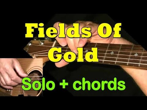 FIELD OF GOLD: Easy Guitar Lesson + TAB + CHORDS by GuitarNick