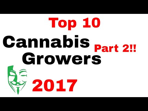 Top 10 Cannabis growers on YouTube 2017!!! The BEST Weed growers PART 2