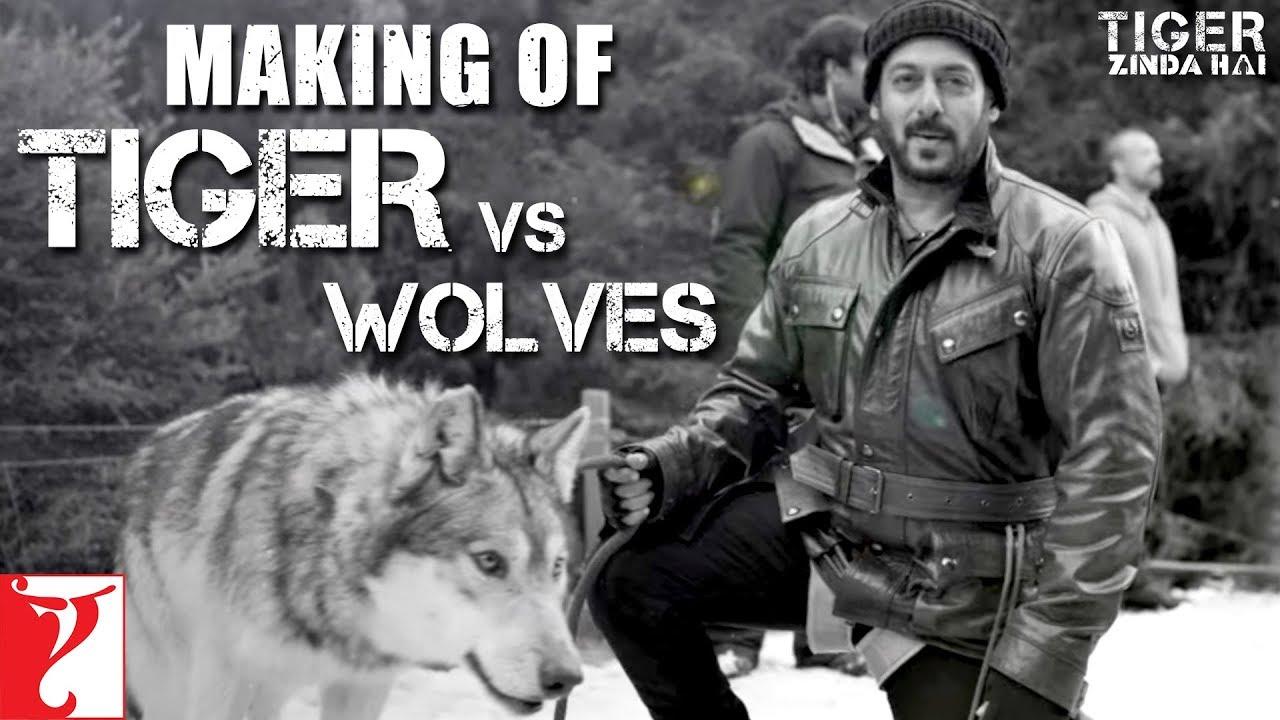 Download Tiger vs Wolves | Making of Tiger Zinda Hai | Salman Khan | Katrina Kaif | Ali Abbas Zafar