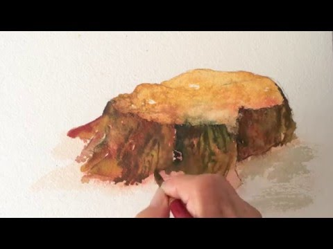 Tree Stump Watercolor Tutorial Part 1, How To Paint Fast And Easy
