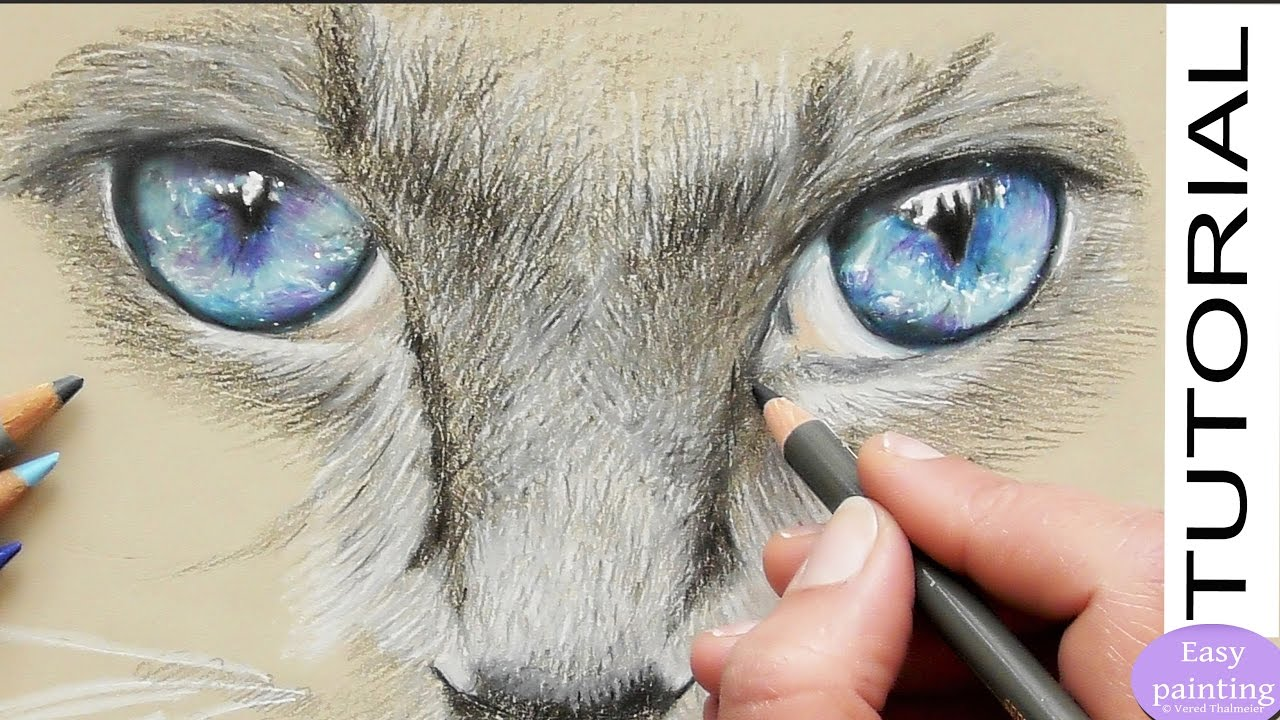 How to draw realistic CAT EYES with Polychromos. Step by ...