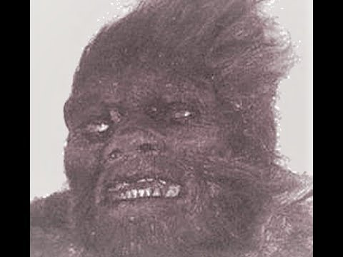 World Bigfoot Radio #46 ~ Bigfoot DNA Blockbuster News!/ Ric