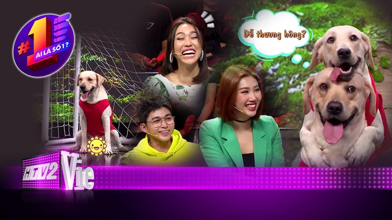 image Trường Giang, Diệu Nhi, Jun Phạm nhập hội fan cuồng vợ chồng chó Củ Cải - Kim Chi | #5 AI LÀ SỐ 1?