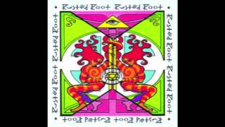 Watch Rusted Root Live A Long Time video