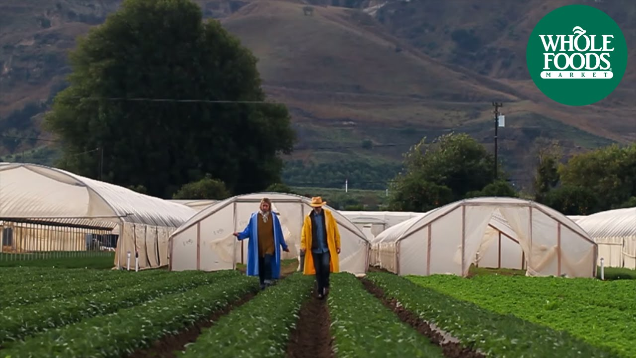 Kenter Canyon Farms Ventura Ca Share The Whole Holiday Whole Foods Market Youtube