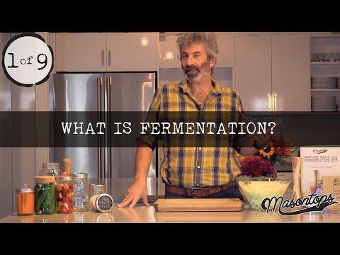 (1 of 9) Sandor Katz - What is Fermentation Anyway?