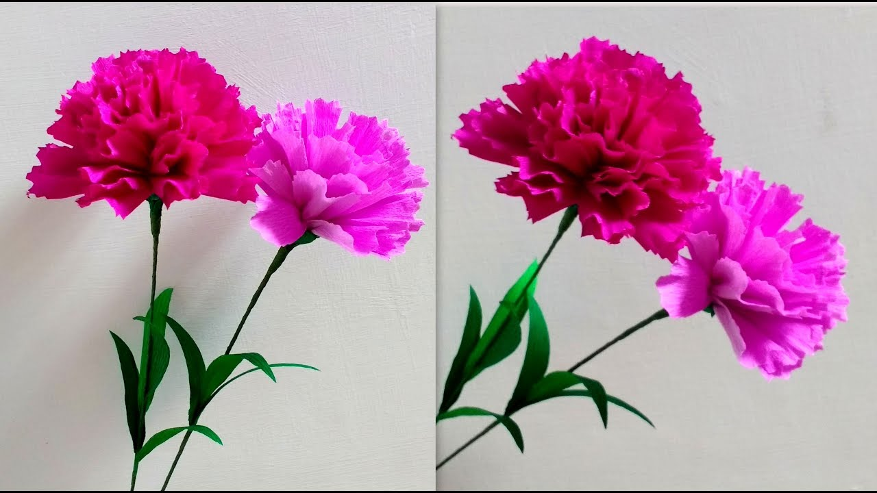 how to make paper flowers carnation    dianthus
