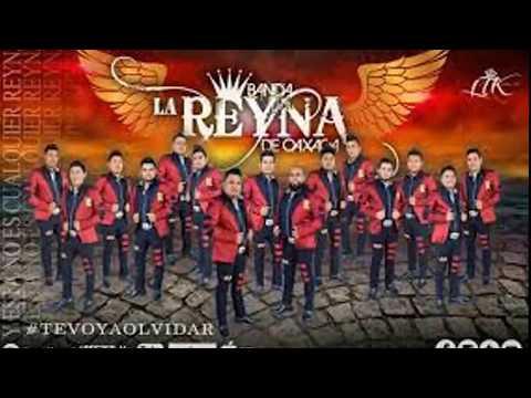 Las 5 mejores bandas de Oaxaca